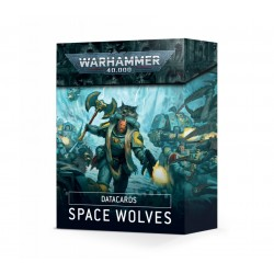Data Cards Space Wolves